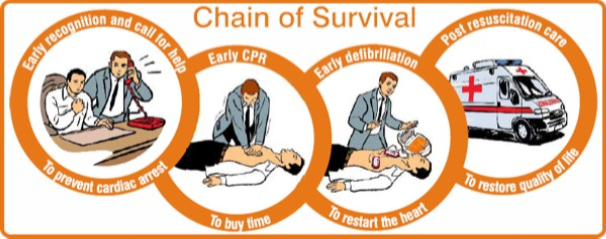HLTAID001 Provide CPR HLTAID002 Provide basic life support Chain-of-Survival